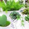 北欧雑貨ショップが扱う『GREENPARK』の造花の観葉植物はリアルでおしゃれで安っぽくない!