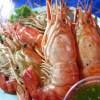 【タイ旅行】チャトゥチャック・ウィークエンド・マーケットの屋台でエビを満喫!