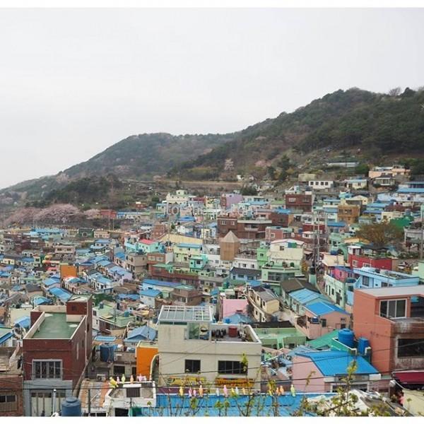韓国のマチュピチュと呼ばれる甘川文化村。キムタクの映画HEROのロケ地としても知られている。私はHERO見てなかったから知らなかったけど。今回の旅はこの景色が見たくて釜山を選んだと言っても過言ではないが。この景色を見て感動した後、泣くことになった…特別な思い出の地となった。#釜山 #busan #甘川文化村