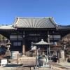 【横浜】妙蓮寺の仏手柑と御朱印