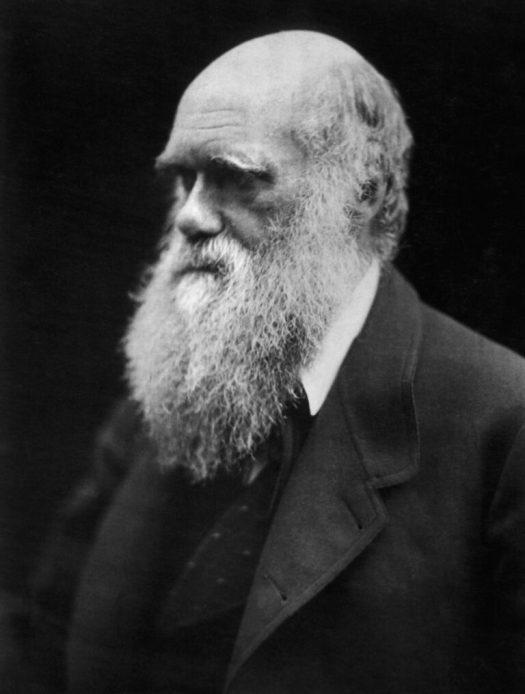 An 1869 portrait of Charles Darwin
