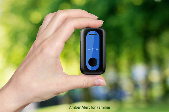 The Amber Alert ($125) is designed for Families
