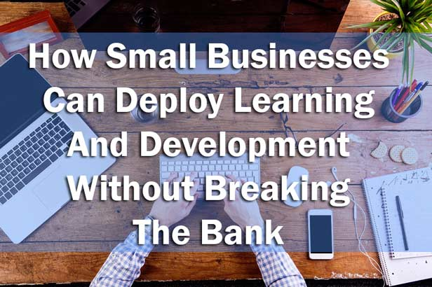 How Small Businesses can Deploy Learning And Development Without Breaking The Bank