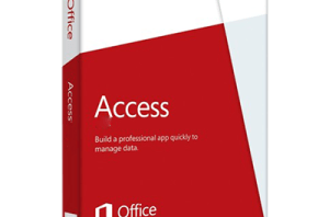 access-300x198
