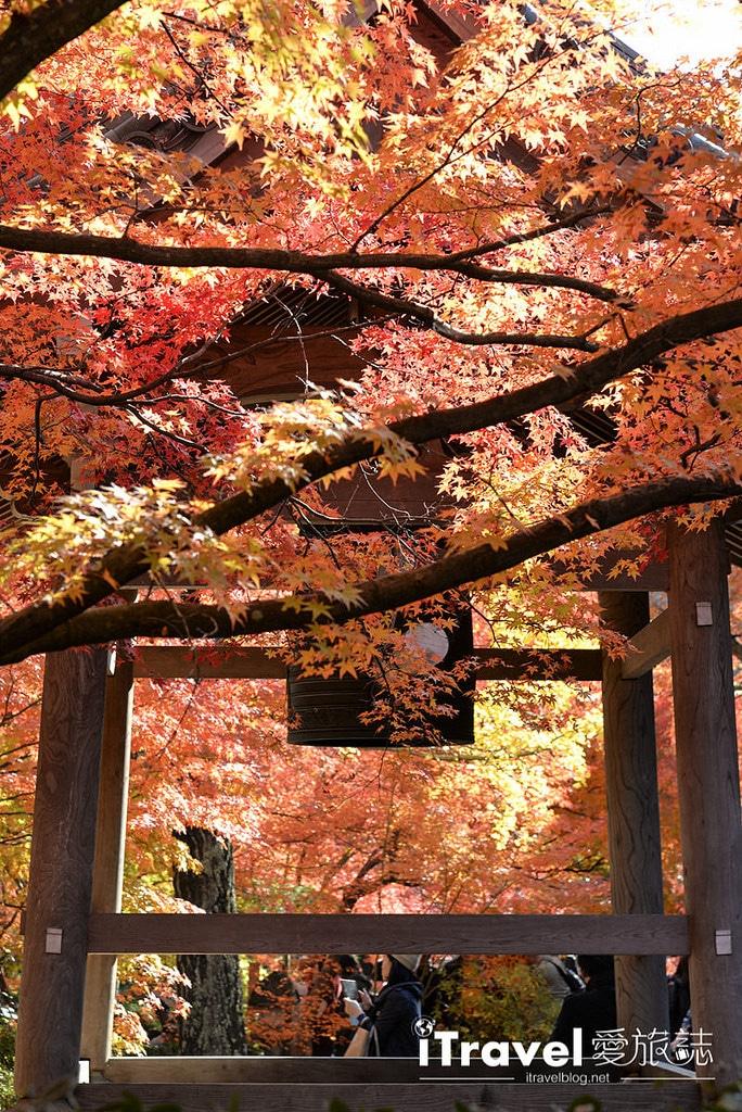 《京都賞楓景點》嵐山常寂光寺:楓華正茂引絡繹不絕觀賞人潮,值得二訪的名所