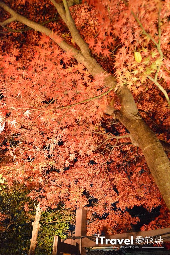 《京都賞楓景點》石塀小路:東山參道的賞楓名所起點
