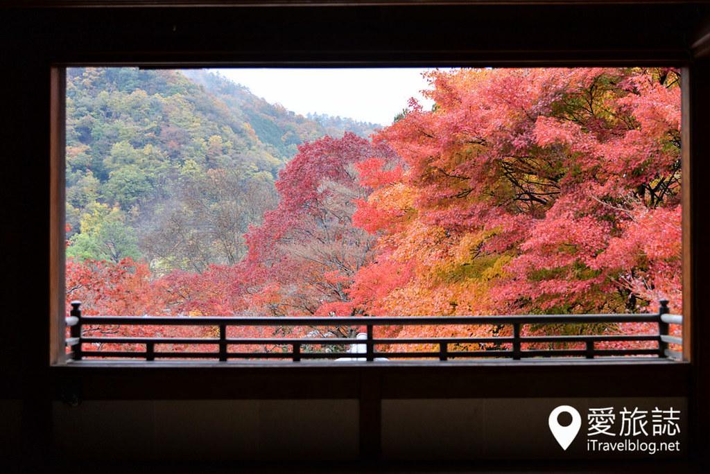 京都賞楓景點 琉璃光院 10