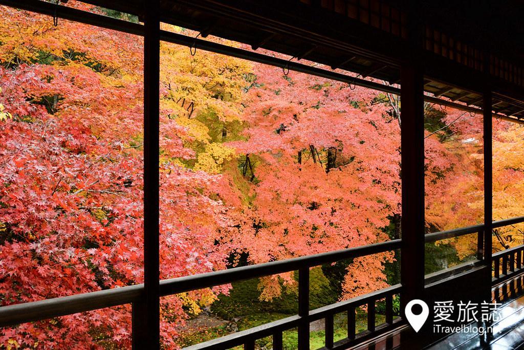 京都賞楓景點 琉璃光院 31