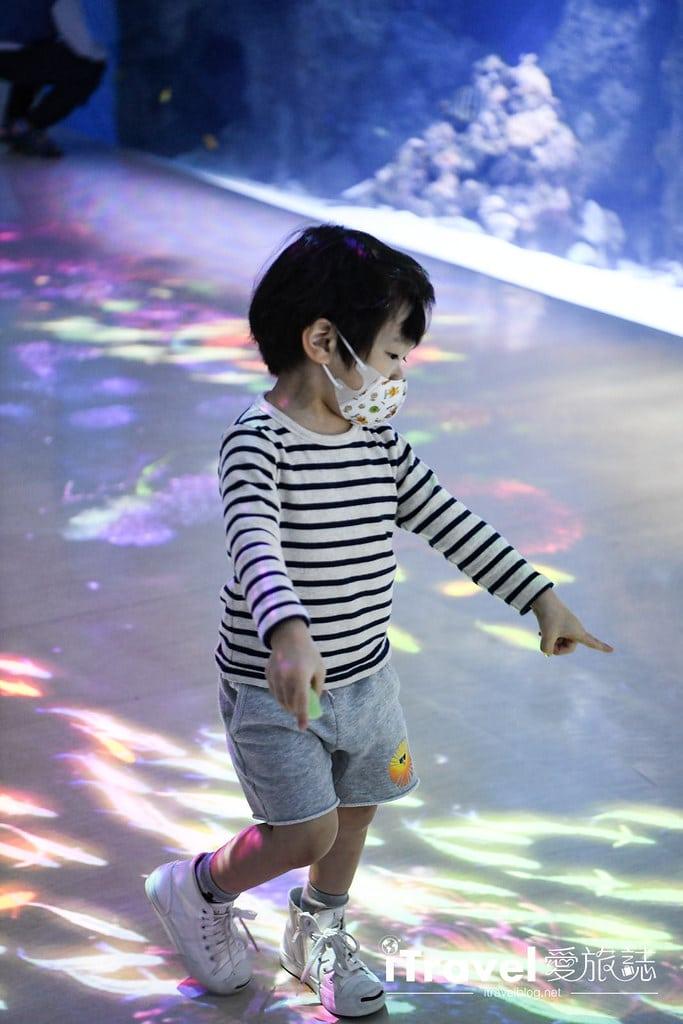桃園八景島水族館 Xpark (22)