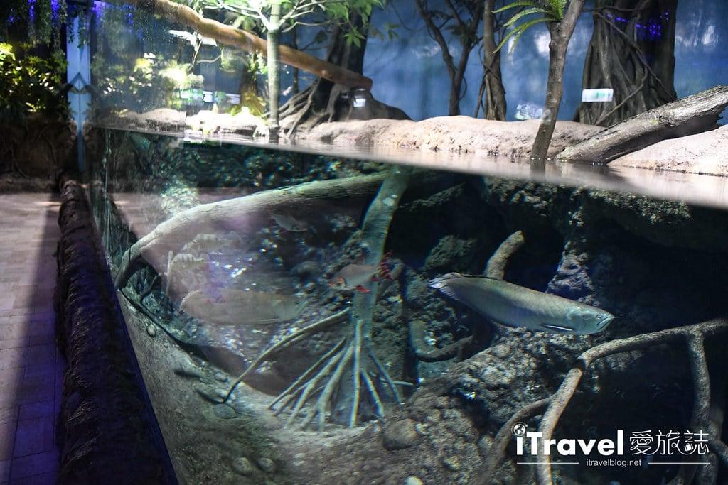 桃園八景島水族館 Xpark (44)