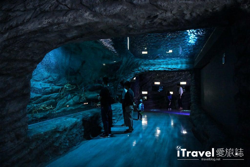 桃園八景島水族館 Xpark (60)