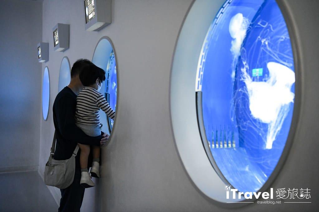 桃園八景島水族館 Xpark (72)
