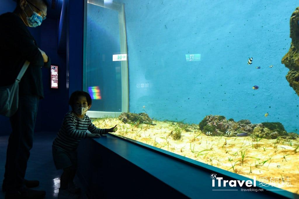 桃園八景島水族館 Xpark (9)