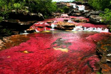 Cano Cristales: Το εντυπωσιακό ποτάμι των χρωμάτων - iTravelling