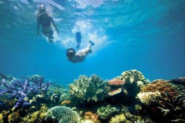 Great Barrier Reef: Βουτιά στο μεγαλύτερο κοραλλιογενή ύφαλο - iTravelling