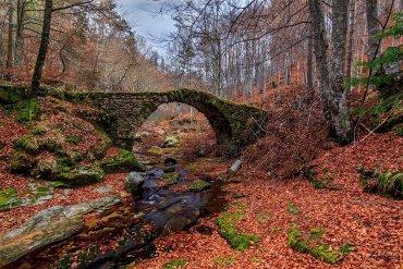 9 φθινοπωρινά τοπία που θα θέλαμε τώρα να επισκεφτούμε στην Ελλάδα - itravelling.gr
