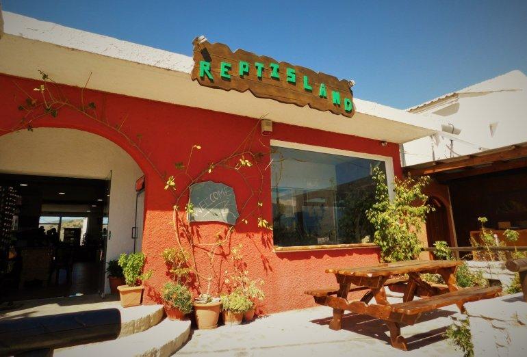 Reptisland: Ταξιδεύουμε στο Νησί των Ερπετών της Κρήτης - itravelling.gr
