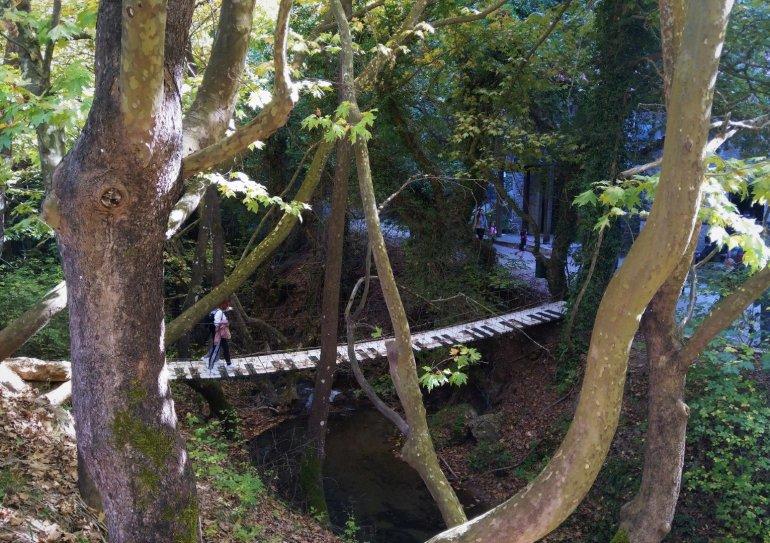 Παύλιανη: Πίσω στη φύση στο μουσικό μονοπάτι της Φθιώτιδας - itravelling.gr