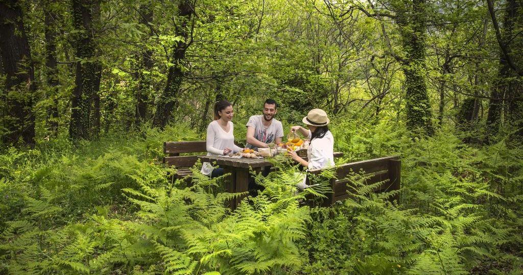 Yoga & Trekking Escape: Wellness εκδρομή στο Abeliona Retreat με την Premium Wellness