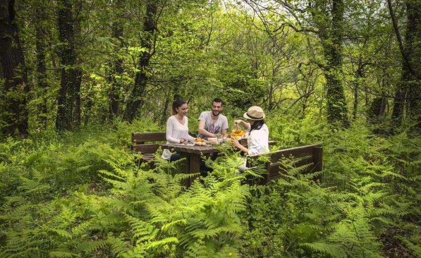 Yoga & Trekking Escape: Wellness εκδρομή στο Abeliona Retreat με την Premium Wellness -itravelling.gr