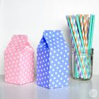 It's A Wrap: DIY Mini Milk Cartons