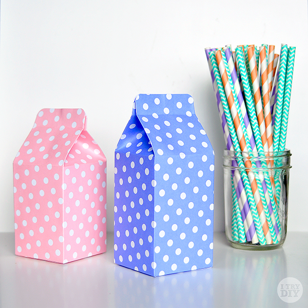 I Try DIY | It's A Wrap: DIY Mini Milk Cartons