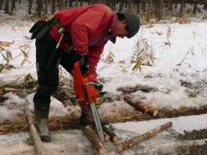 チェーンソーで木を切り出して春の準備