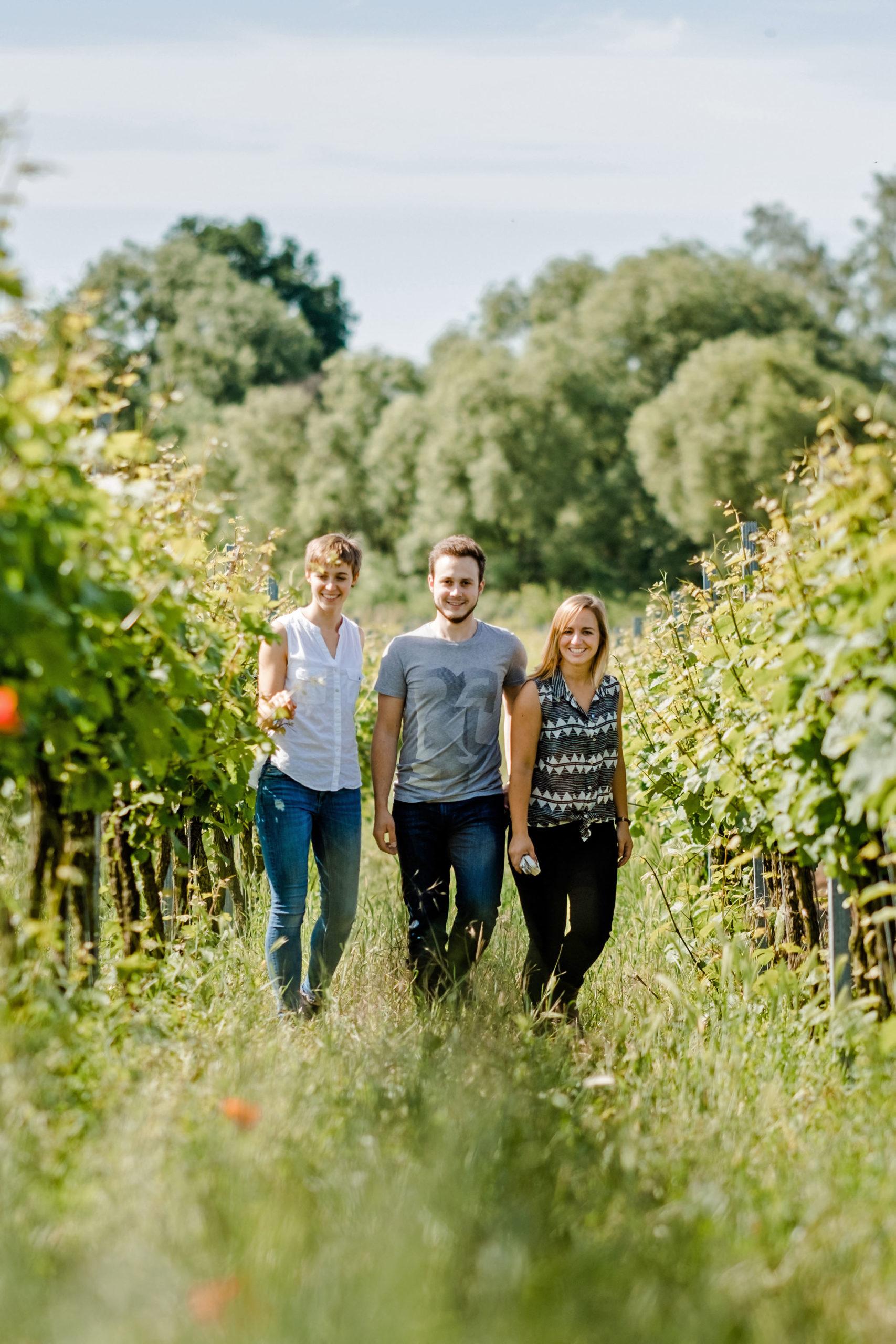 Studenten zum Master Weinbau und Oenologie im Weinberg