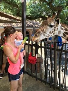 giraffe riley