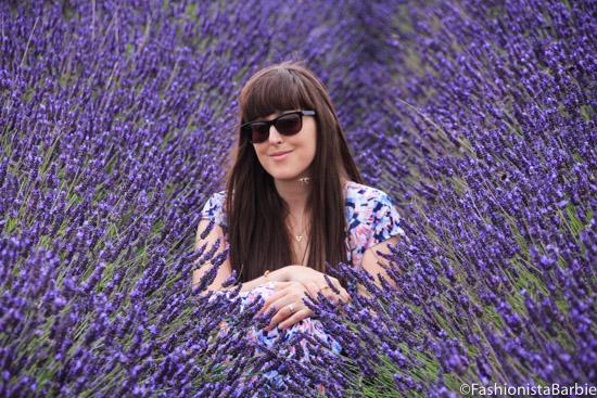 lavender-farm-very-dress-24