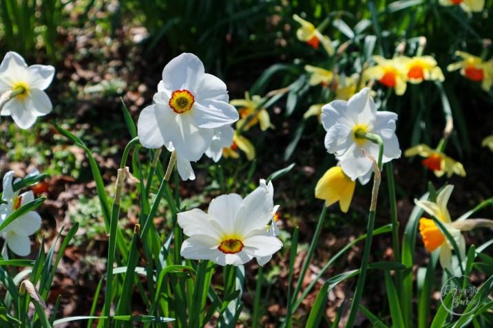 Spring-style-weekend-5
