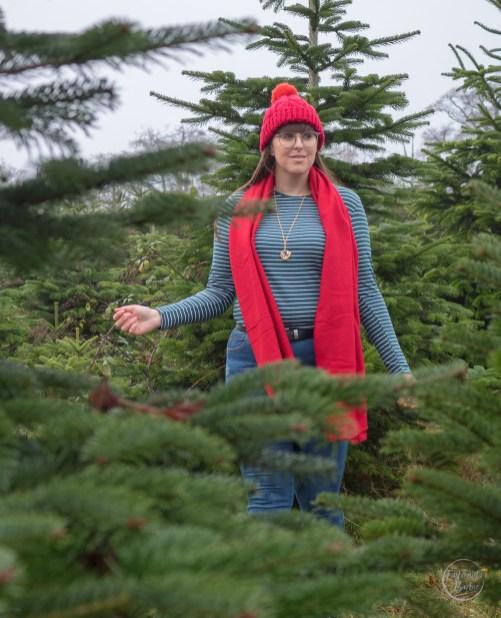 Christmas Tree Farm, Christmas Tree, Christmas Traditions, Things To Do This Christmas, Festive, Holiday Season, Xmas, Christmas Shopping,