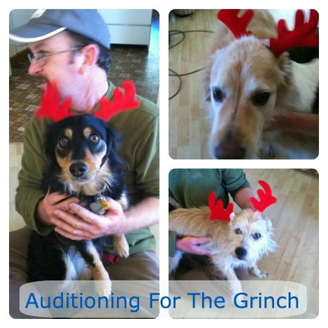 Auditioning For The Grinch