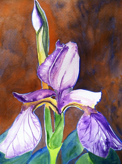 I Painted An Iris But Dislike The Composition.