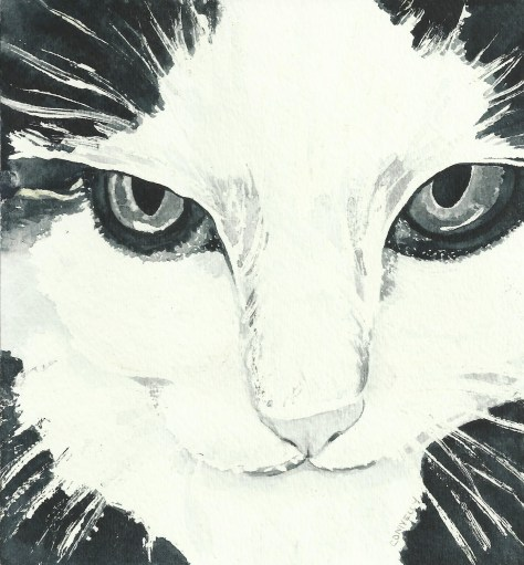 Cats in Watercolor Day 1 September 2016