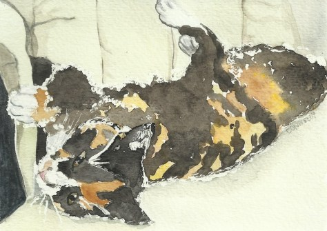 Painting Cats in Watercolor Day 3 September 2016