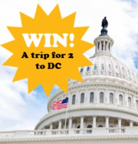 Win a Trip for 2 to DC as part of KaBOOM's playground challenge 2012.