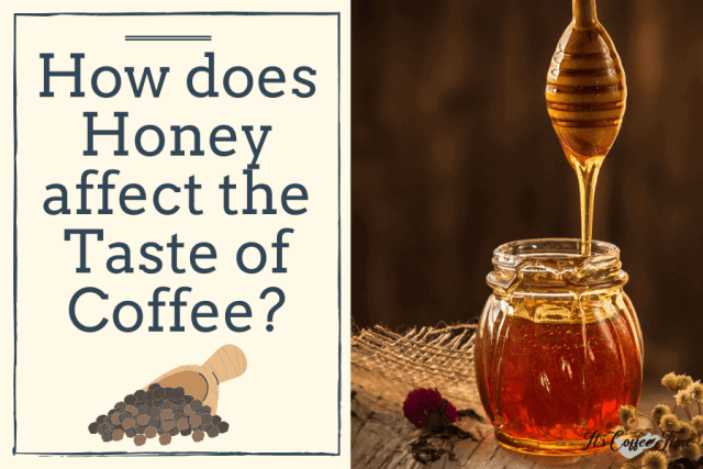 How does Honey affect the Taste of Coffee