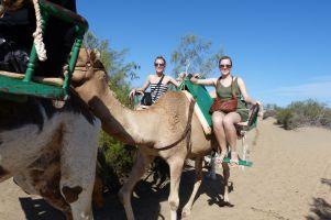 gran-canaria-maspalomas-kamelreiten