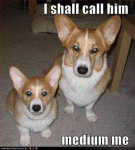 Medium Me