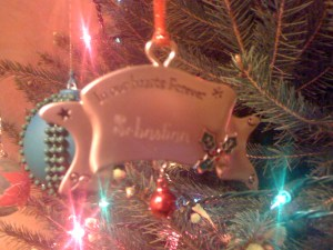 Sebastian's Christmas tree ornament gift