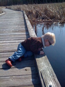 E looking into the pond on the boardwalk