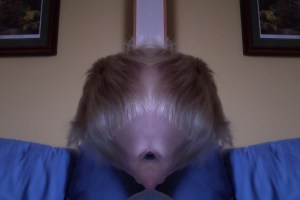 E mirror face photo booth
