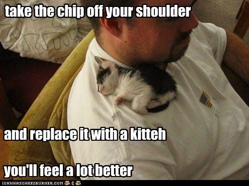kitteh on your shoulder