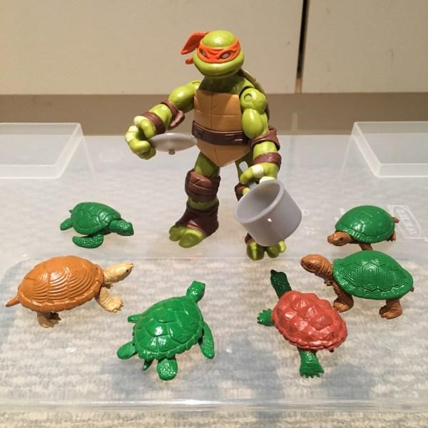 michelangelo-ninja-turtle-raphael-cooking-class
