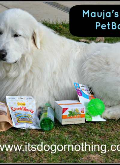 Mauja's First PetBox!