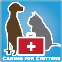 Caring For Critters: Canine Parvovirus