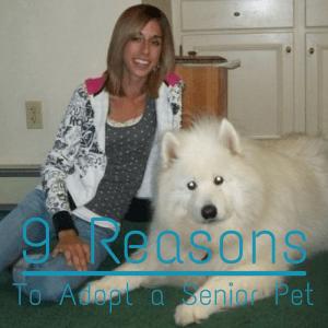 9 Reasons to Adopt a Senior Pet
