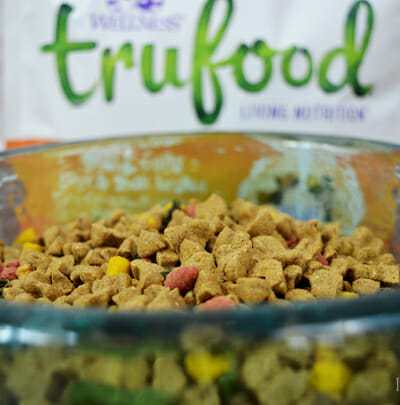 Baked vs. Extruded Dog Food + A Wellness GIVEAWAY!