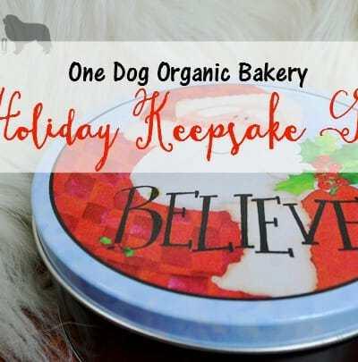 Celebrating With One Dog Organic Bakery Holiday Tins